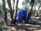 Moreson Cottages and Campsites Campsite